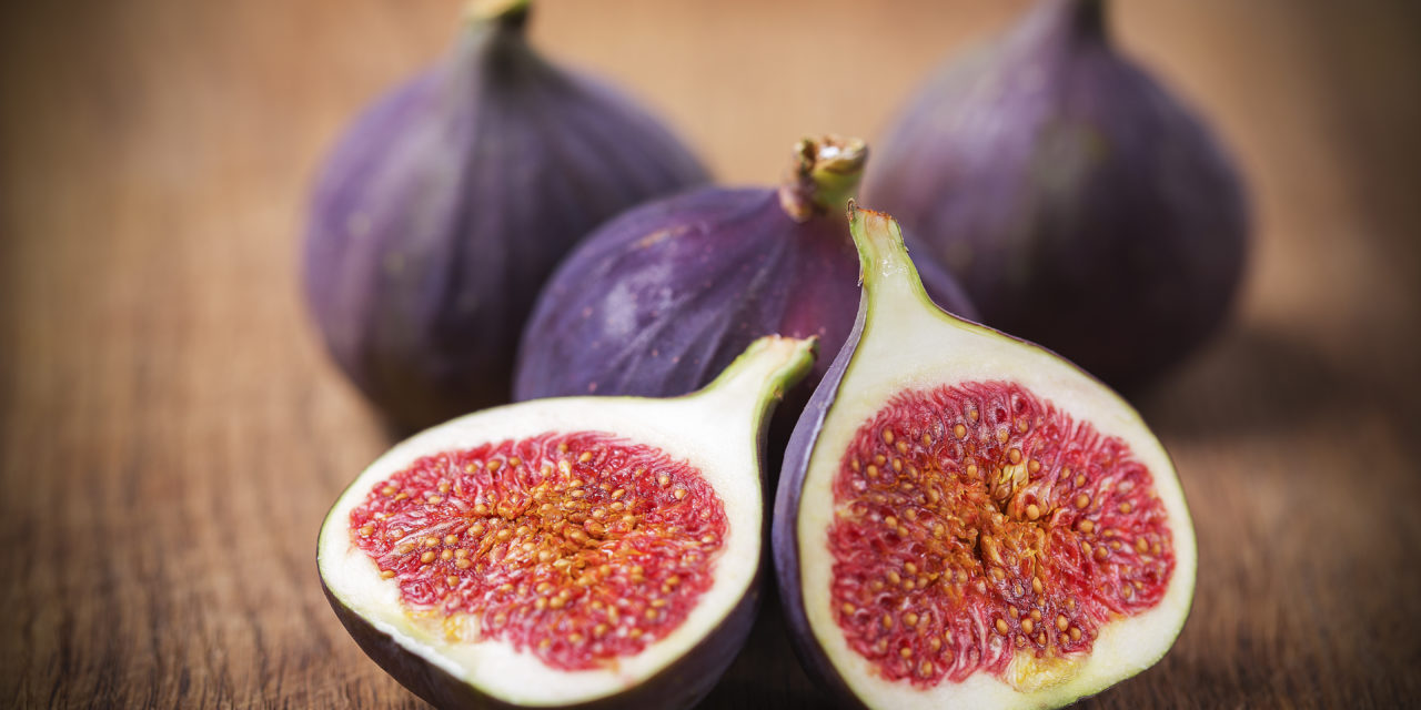 Hezekiah and the Fig Poultice